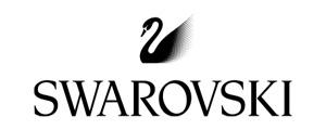 swarovski designer frame logo